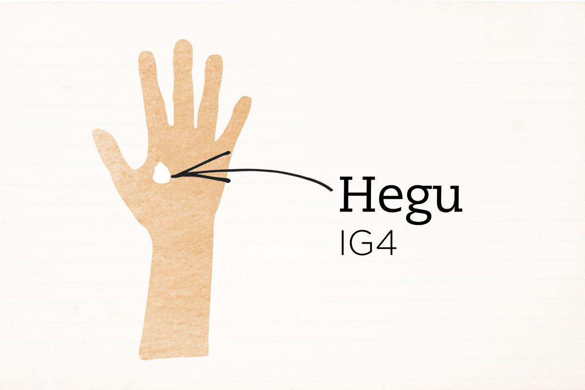 Resultado de imagen de punto hegu ilustracion