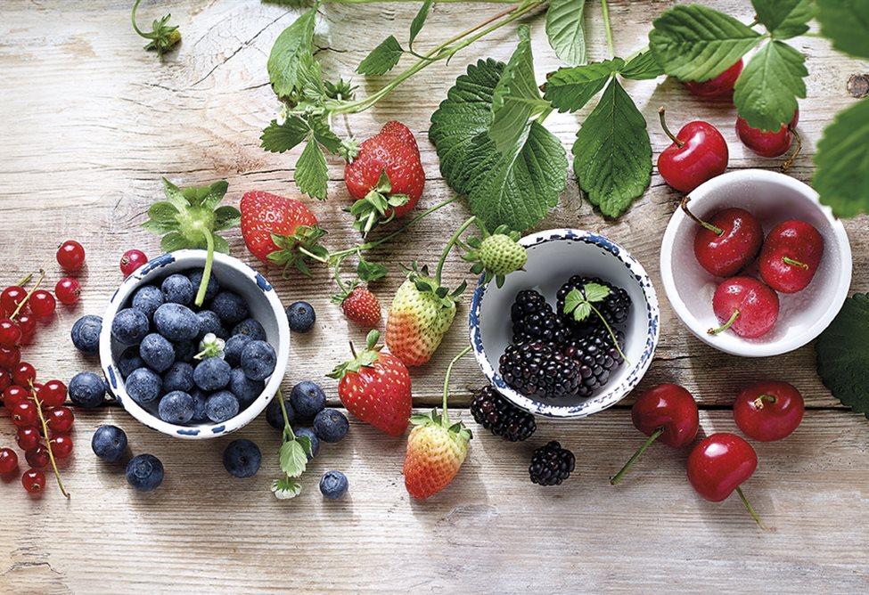 6 frutos rojos cargados de antioxidantes for Arbol de frutos rojos pequenos