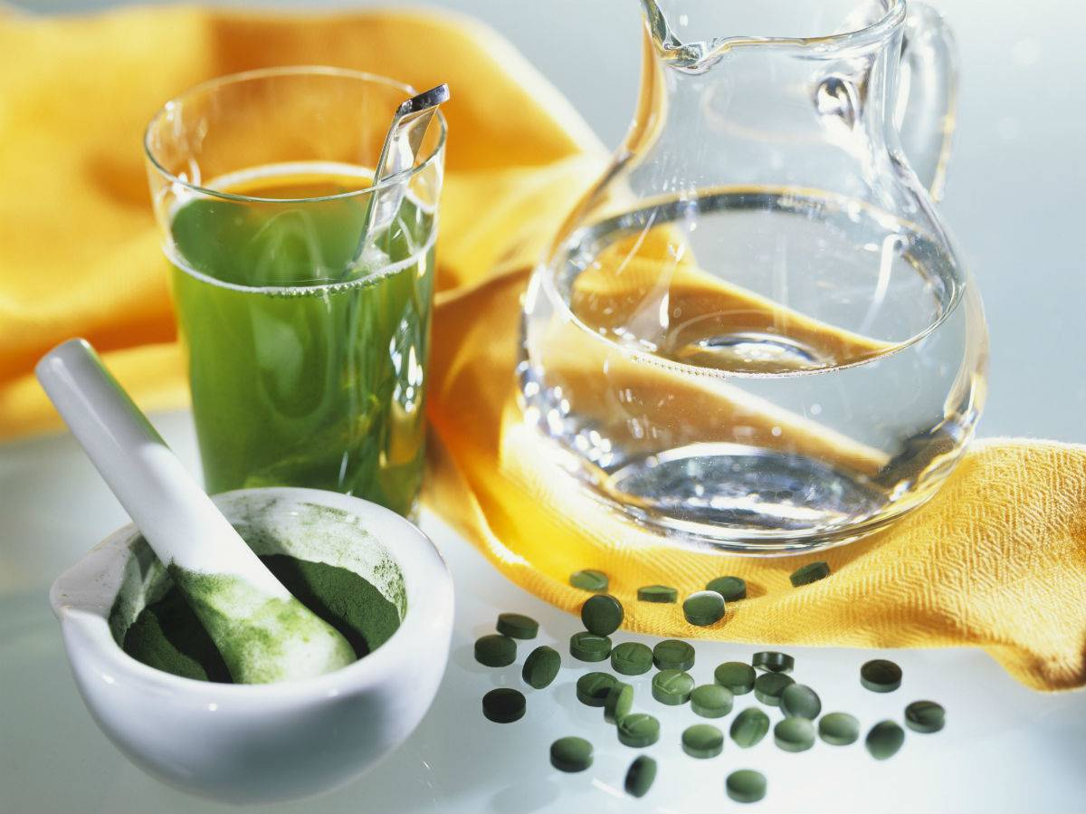 Alga chlorella. 10. Alga chlorella