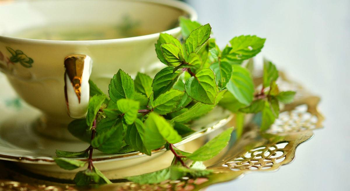 8 Hábitos Para Calmar La Acidez De Estómago