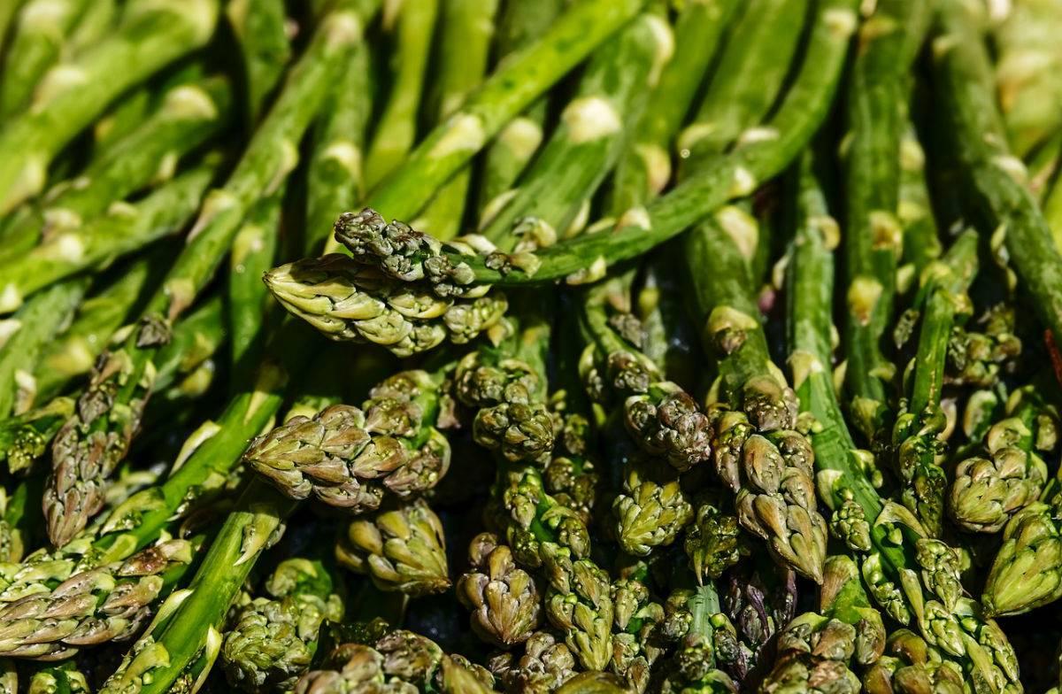 esparragos. 2. Espárragos verdes vitamínicos y depurativos