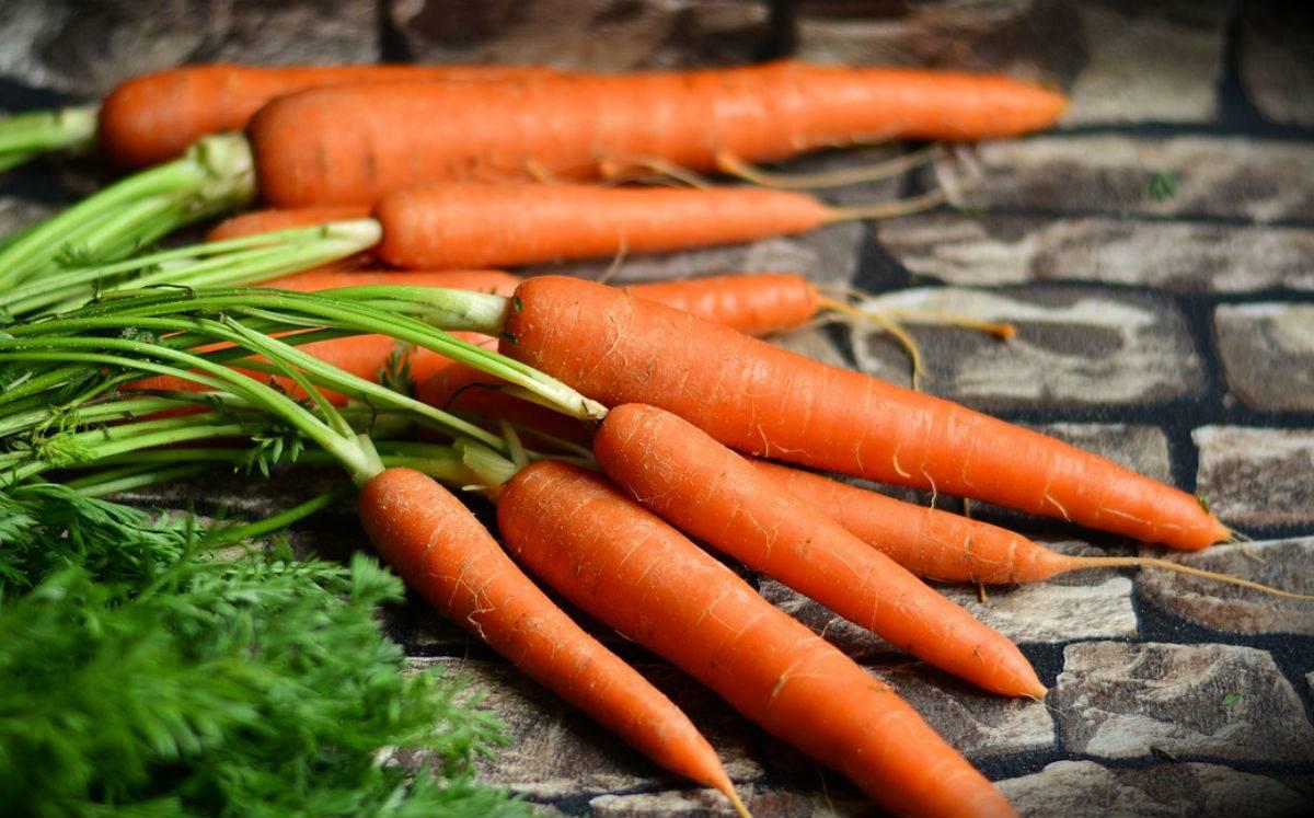 zanahoria. 1. Zanahoria para la piel