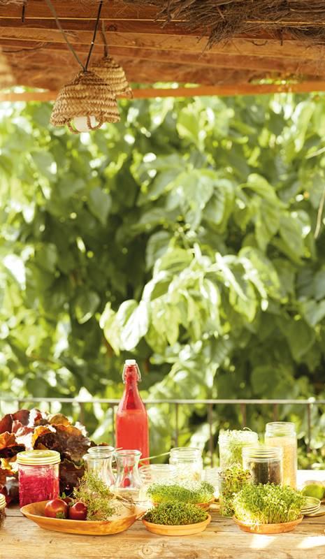 Alimentos recomendados para la psoriasis