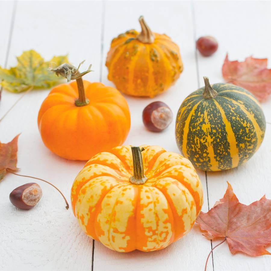 12 frutas y verduras para comer en octubre