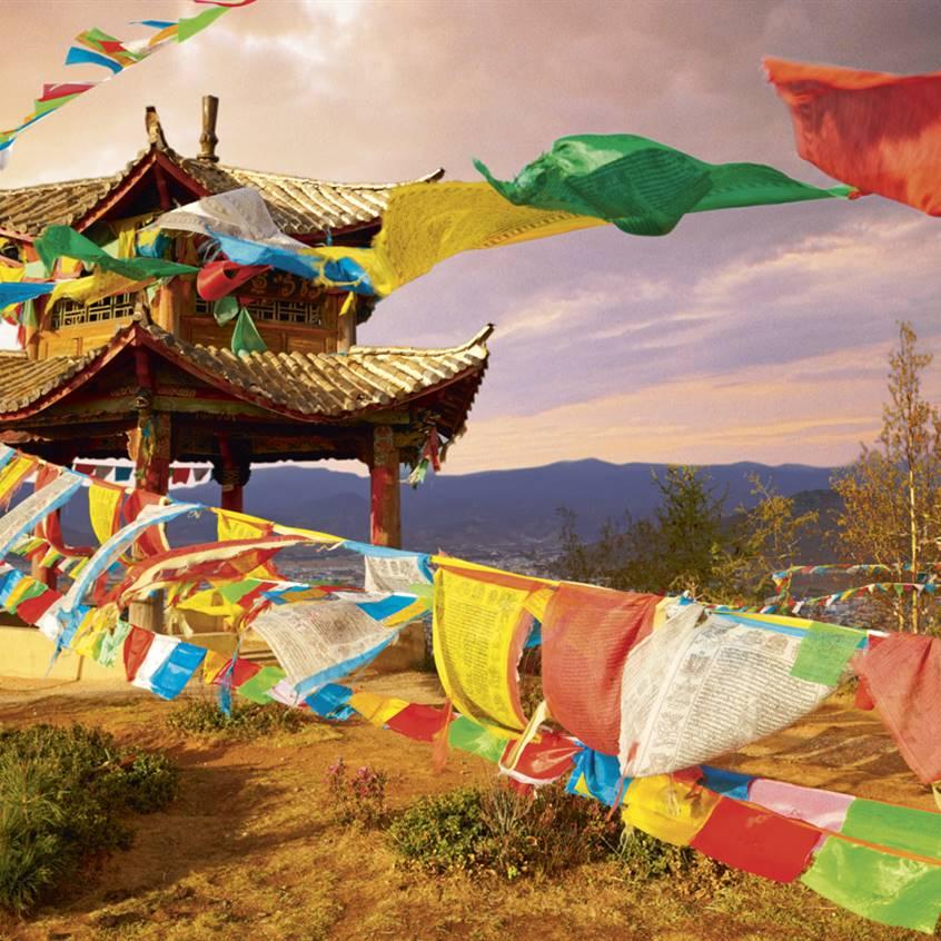 medicina tibetană în varicoză)
