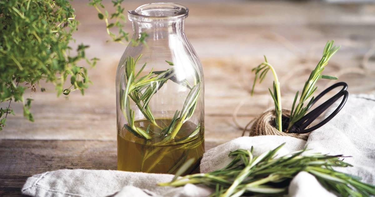 puntada Instruir entusiasmo  4 plantas medicinales para frenar la caída del cabello