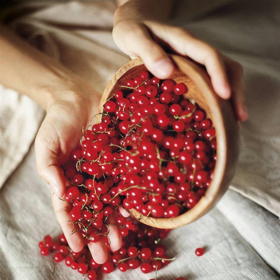8 alimentos que equilibran tus estrógenos