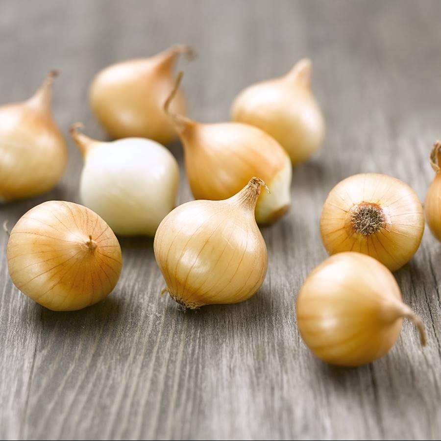 7 tipos de cebolla: descubre sus características y cómo prepararlas