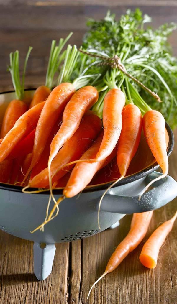 Zanahoria Propiedades Y Beneficios Para La Salud Las zanahorias proporcionan vitamina a y b, fibra, una variedad de otros minerales. zanahoria propiedades y beneficios