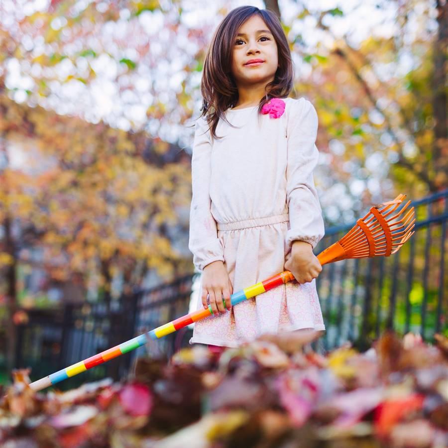 Jardín de invierno: 4 consejos para proteger a los pequeños animales
