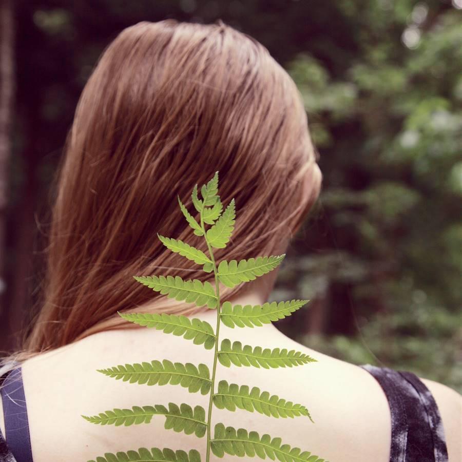 5 consejos naturales para eliminar la caspa
