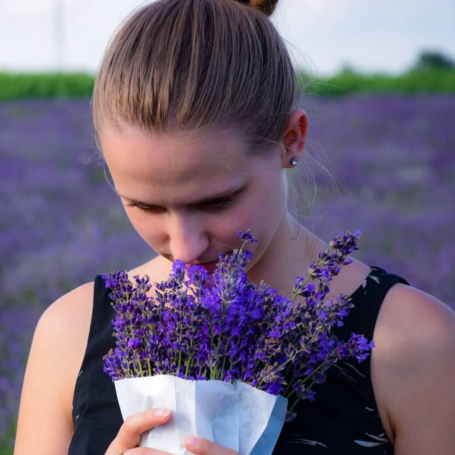 Los secretos del olfato