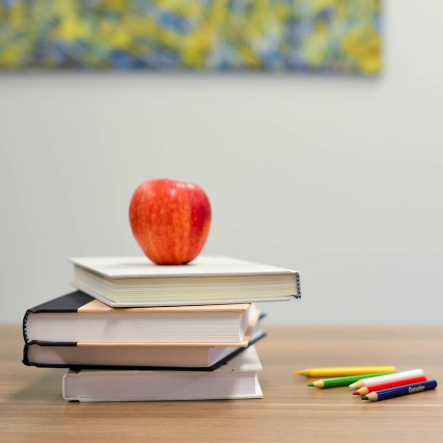 La neurociencia puede mejorar la educación