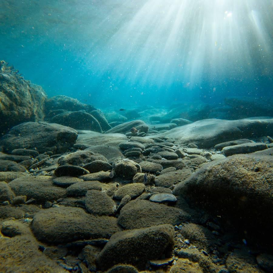 El mar es la nueva gran farmacia natural