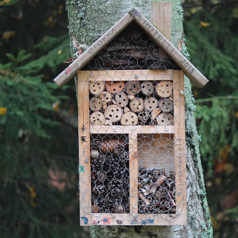 Cómo construir un hotel de insectos