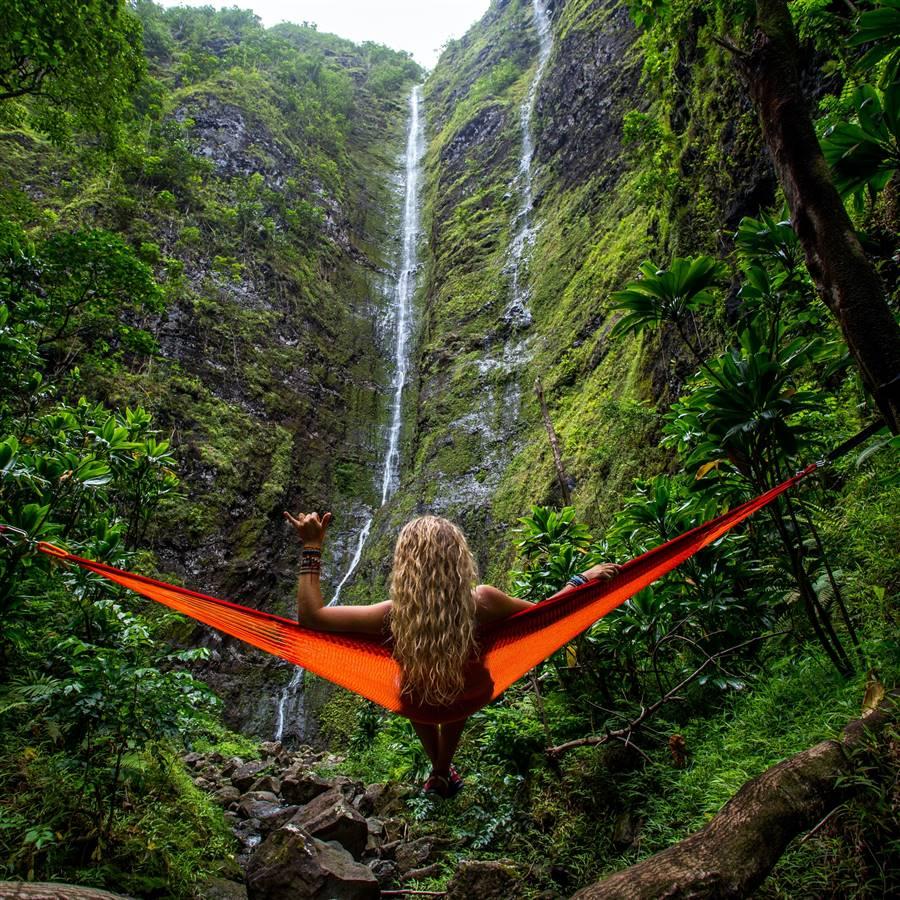 6 consejos para ayudar a proteger las selvas tropicales