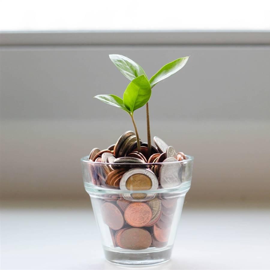 10 consejos para ser más sostenible y ahorrar dinero